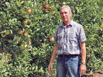 Сергей Краевский, главный агроном совхоза Архипо-Осиповский