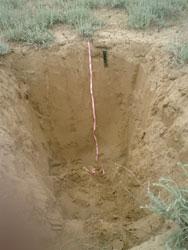 Почвенный разрез. Выполнен для изучения профиля почв и отбора образцов