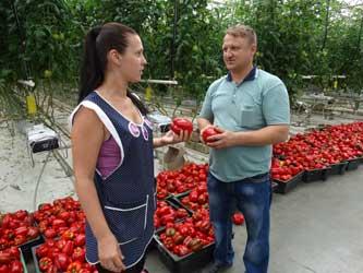 Агроном хозяйства Михаил Скударнов
