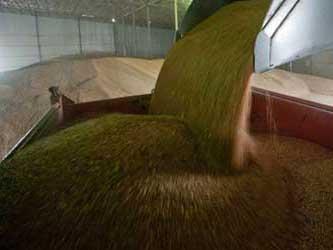 экспорт российского зерна
