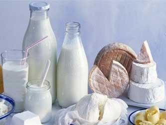 сокращение производства молока на Кубани