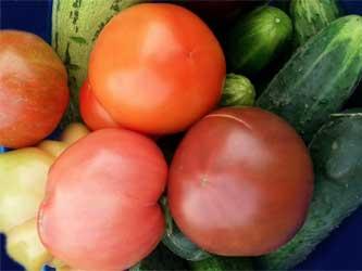 кубанские овощи