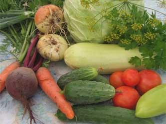 экологически чистые овощи