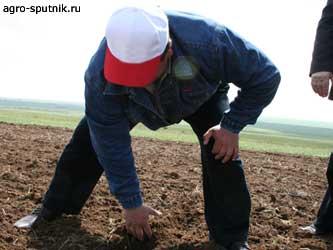 ответственность за порчу земли