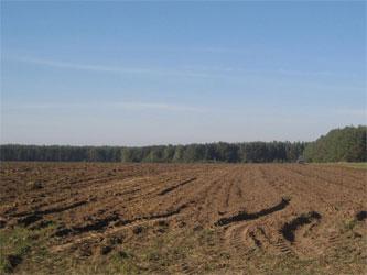 земля сельскохозяйственного поля