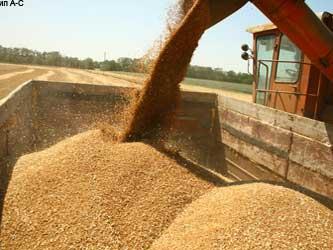 уборка зерна в Крыму