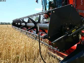 уборка урожая зерновых в Краснодарском крае