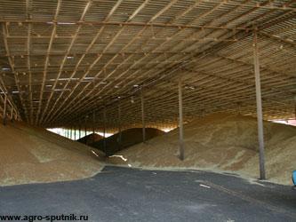 зерновой рынок России