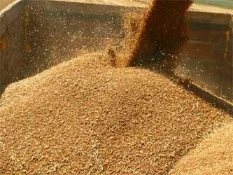 урожай зерна в 2015 году