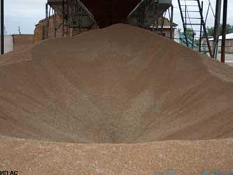 Российское зерно